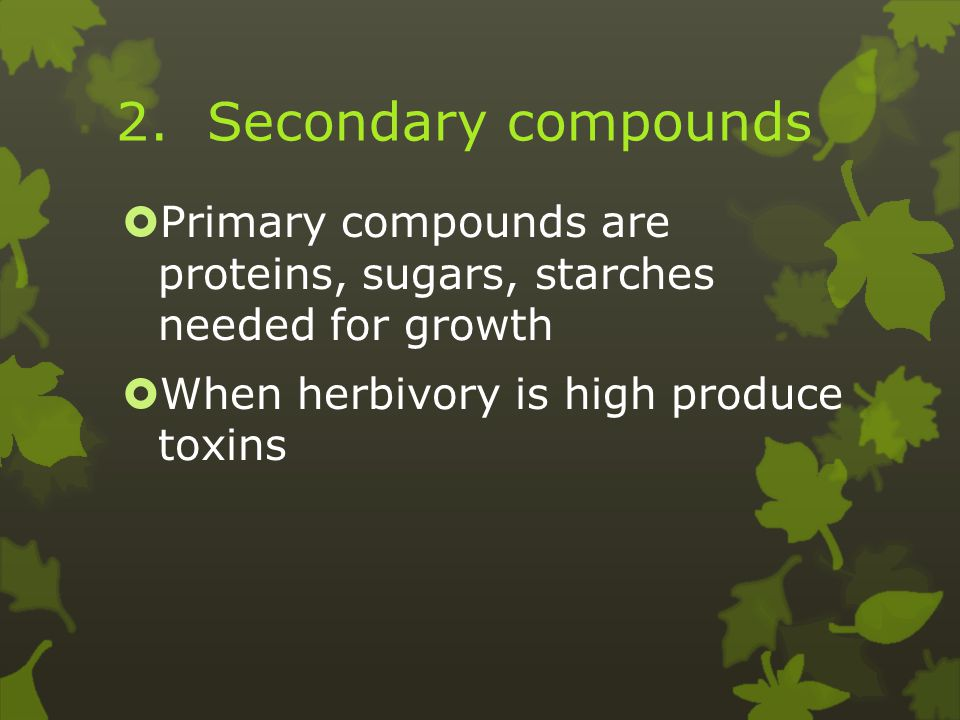 2. Secondary compounds  Primary compounds are proteins, sugars, starches needed for growth  When herbivory is high produce toxins