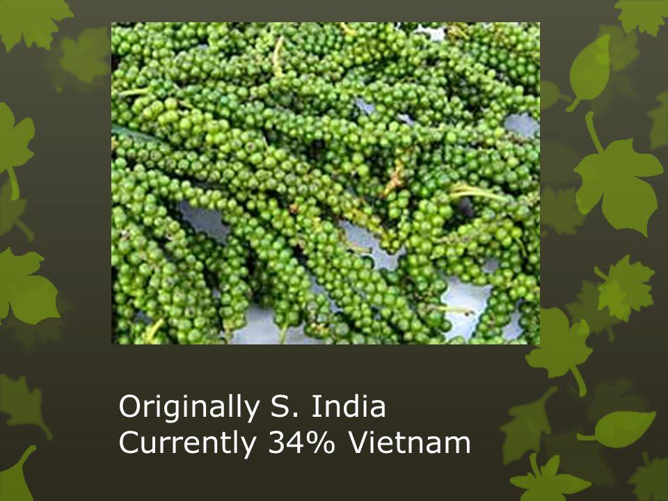 Originally S. India Currently 34% Vietnam