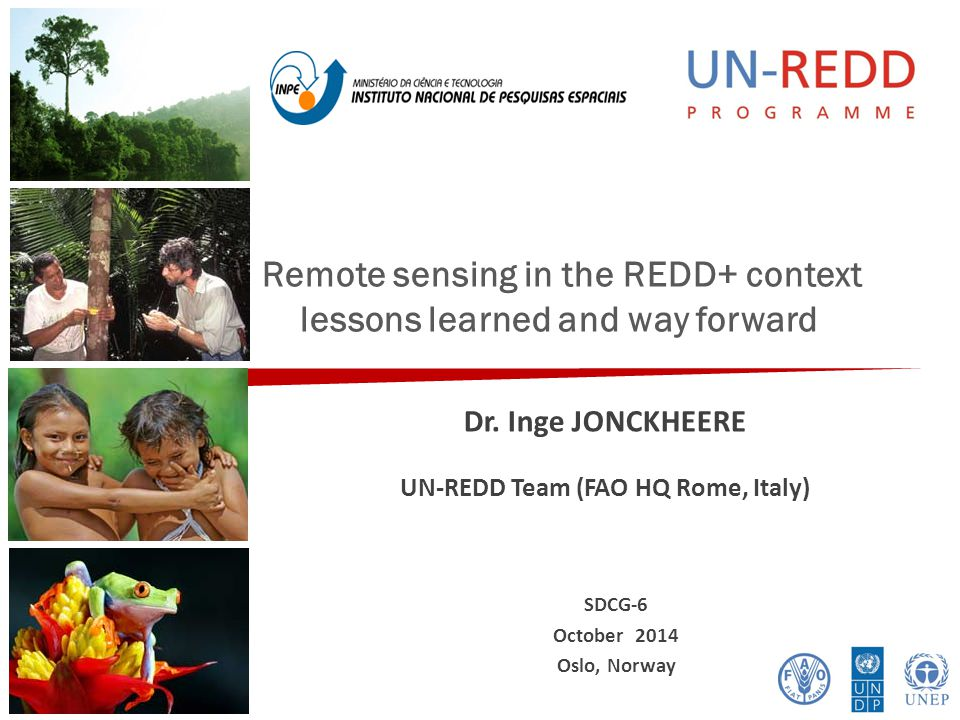 Remote sensing in the REDD+ context lessons learned and way forward Dr. Inge JONCKHEERE UN-REDD Team (FAO HQ Rome, Italy) SDCG-6 October 2014 Oslo, No