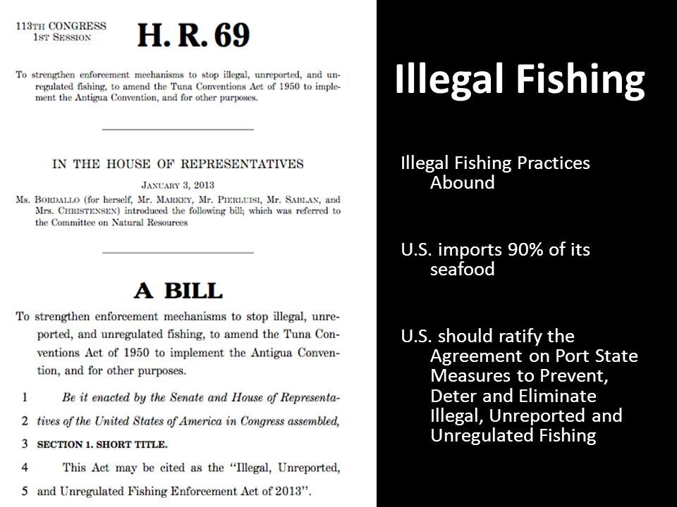 Illegal Fishing Illegal Fishing Practices Abound U.S.