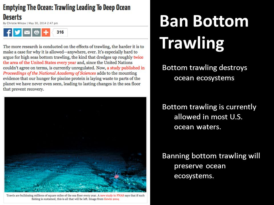 Ban Bottom Trawling Bottom trawling destroys ocean ecosystems Bottom trawling is currently allowed in most U.S. ocean waters. Banning bottom trawling