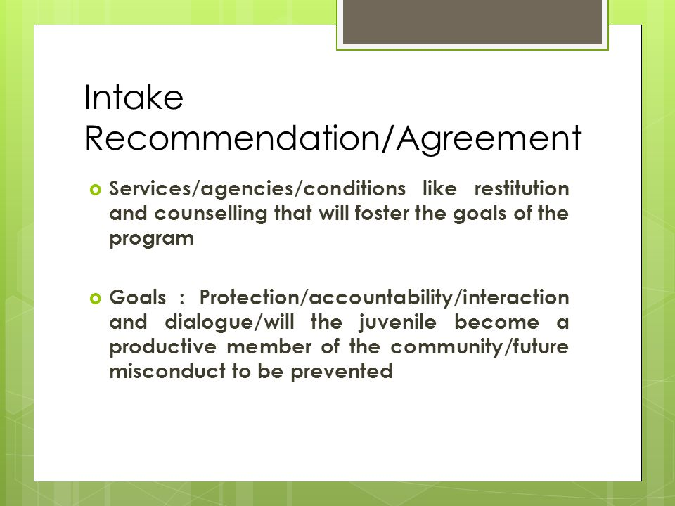 Intake Recommendation/Agreement  Services/agencies/conditions like restitution and counselling that will foster the goals of the program  Goals : Protection/accountability/interaction and dialogue/will the juvenile become a productive member of the community/future misconduct to be prevented