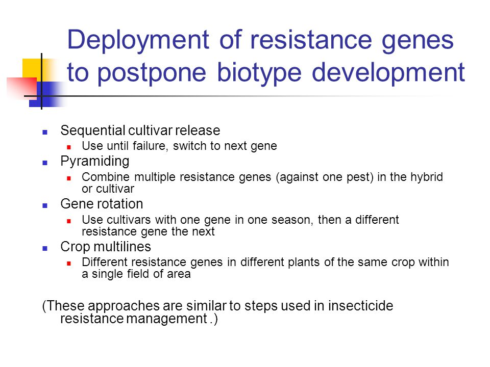 Deployment of resistance genes to postpone biotype development Sequential cultivar release Use until failure, switch to next gene Pyramiding Combine multiple resistance genes (against one pest) in the hybrid or cultivar Gene rotation Use cultivars with one gene in one season, then a different resistance gene the next Crop multilines Different resistance genes in different plants of the same crop within a single field of area (These approaches are similar to steps used in insecticide resistance management.)