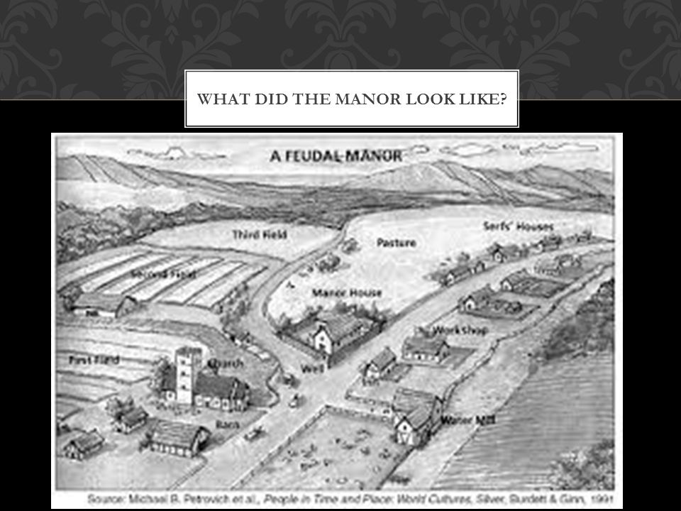 WHAT DID THE MANOR LOOK LIKE?