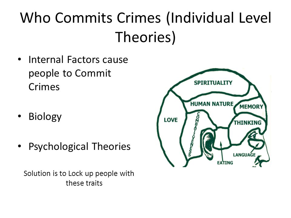 Who Commits Crimes (Individual Level Theories) Internal Factors cause people to Commit Crimes Biology Psychological Theories Solution is to Lock up people with these traits
