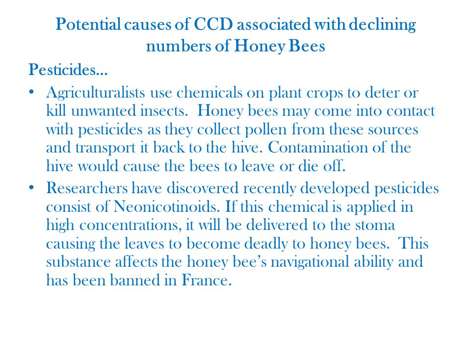 Potential causes of CCD associated with declining numbers of Honey Bees Pesticides… Agriculturalists use chemicals on plant crops to deter or kill unwanted insects.