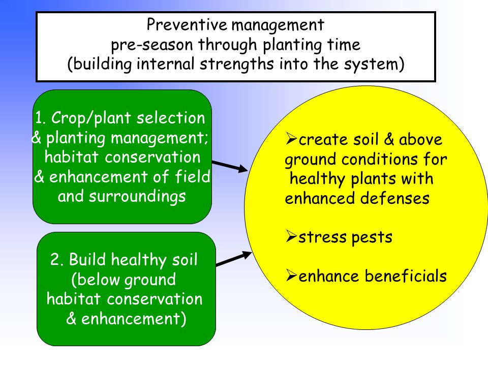 Preventive management pre-season through planting time (building internal strengths into the system)  create soil & above ground conditions for healthy plants with enhanced defenses  stress pests  enhance beneficials 1.