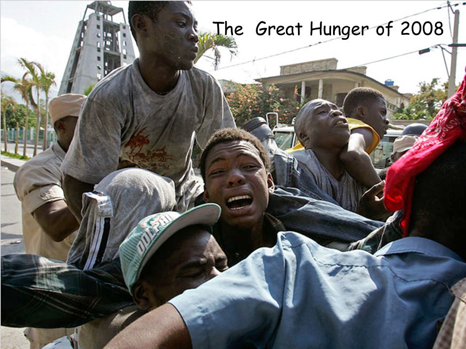 The Great Hunger of 2008