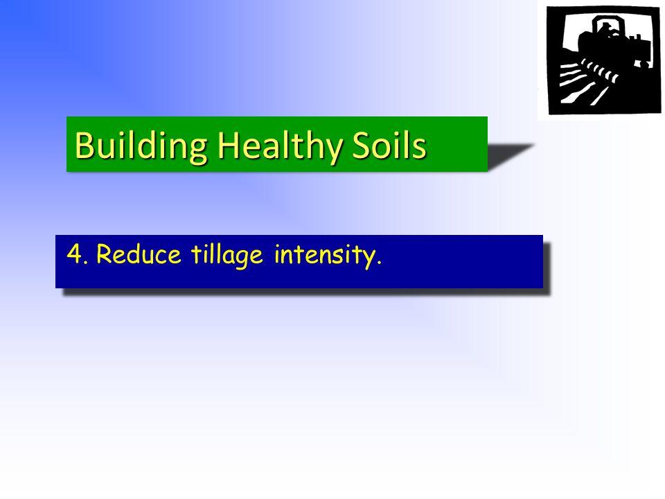 4. Reduce tillage intensity.