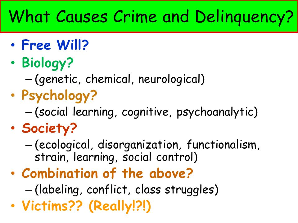 What Causes Crime and Delinquency? Free Will? Biology? – (genetic, chemical, neurological) Psychology? – (social learning, cognitive, psychoanalytic)