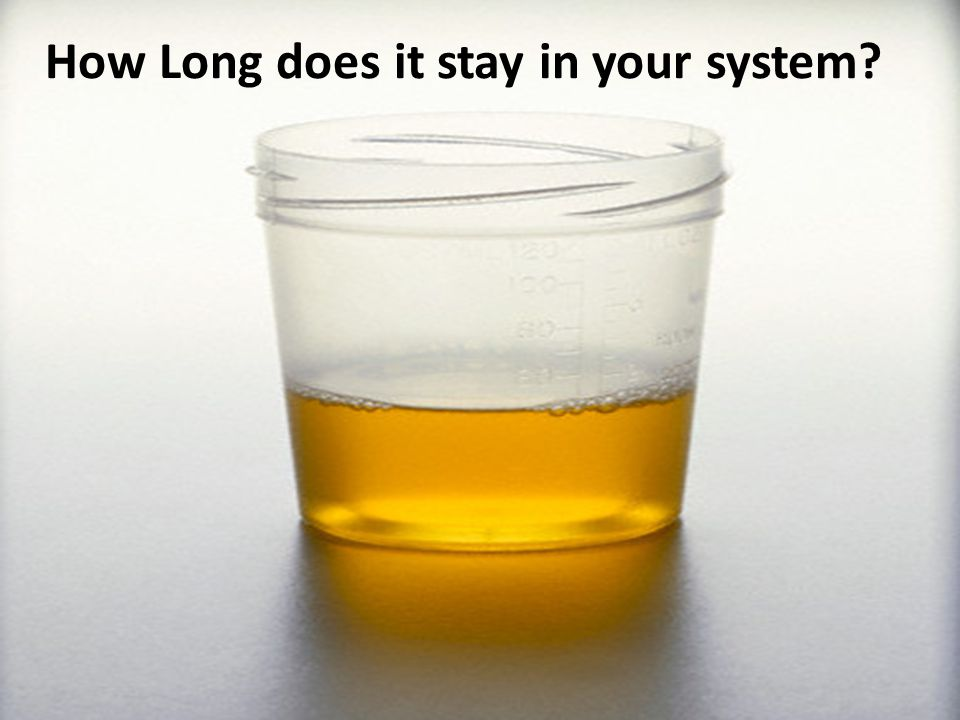 How Long does it stay in your system