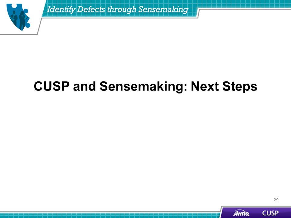 CUSP and Sensemaking: Next Steps 29
