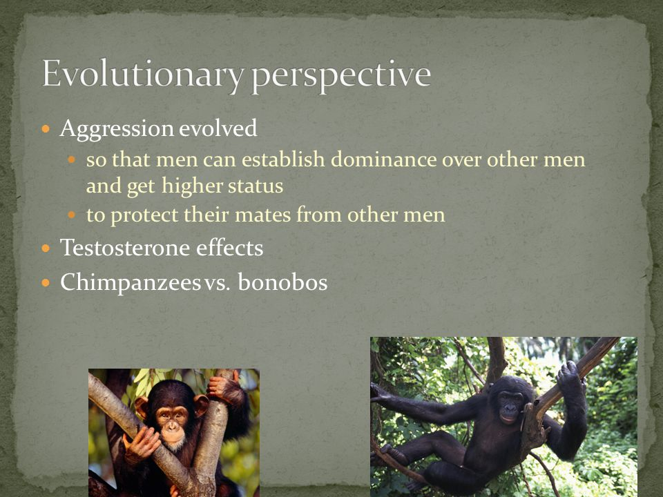 Aggression evolved so that men can establish dominance over other men and get higher status to protect their mates from other men Testosterone effects