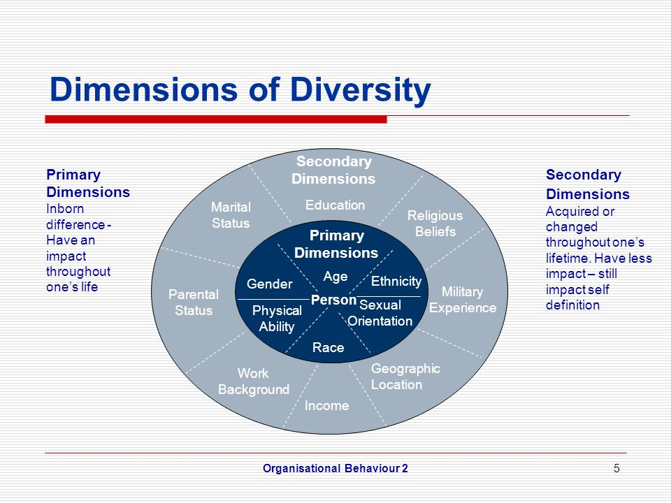 16 Diversity Programs Expatriates = employees who live and work in a country other than their own Global Diversity Program – Employee selection – Employee training – Understanding high vs.