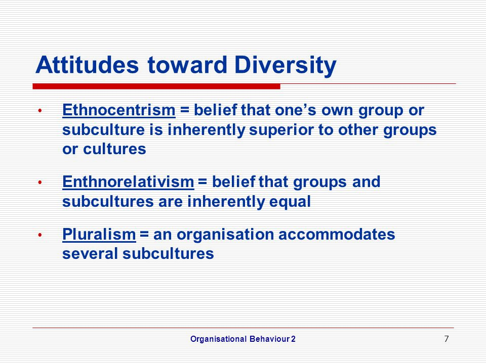 Leveraging Diversity Multicultural teams = made up from diverse national, racial, ethnic and cultural backgrounds Employee network groups = based on social identity, and organised by employees to focus on concerns of employees from that group Organisational Behaviour 28