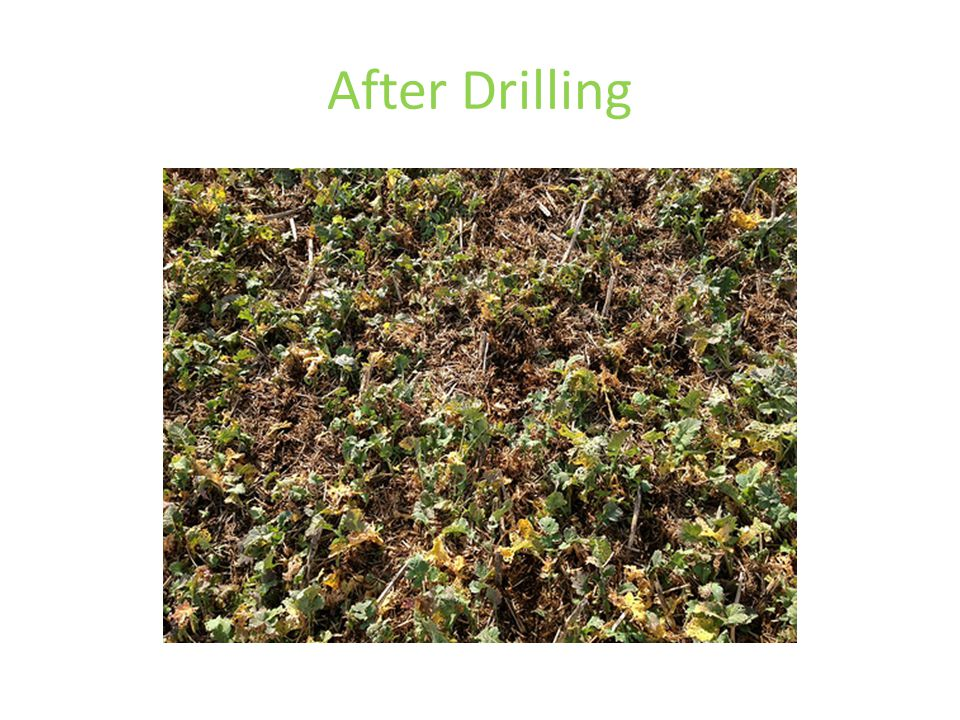 After Drilling