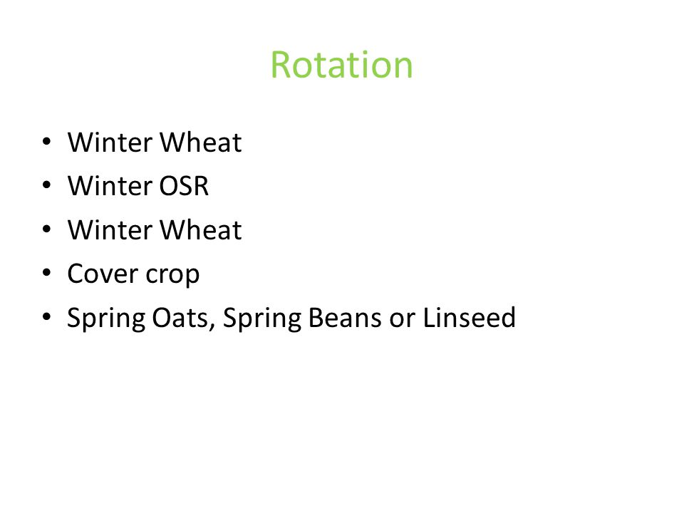 Rotation Winter Wheat Winter OSR Winter Wheat Cover crop Spring Oats, Spring Beans or Linseed