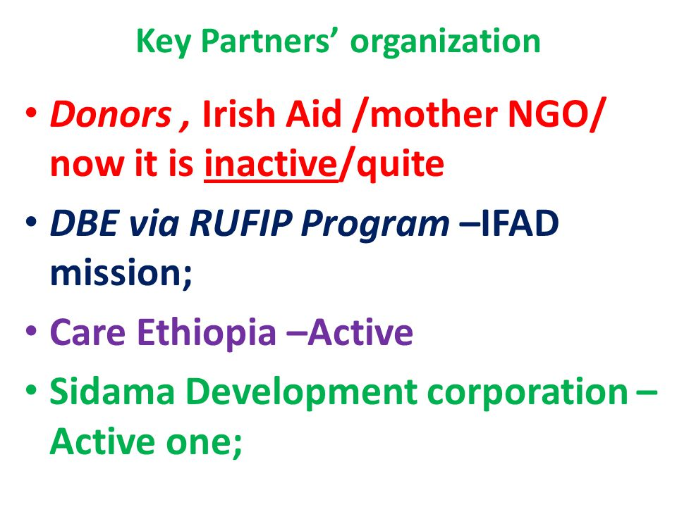 Key Partners' organization Donors, Irish Aid /mother NGO/ now it is inactive/quite DBE via RUFIP Program –IFAD mission; Care Ethiopia –Active Sidama Development corporation – Active one;