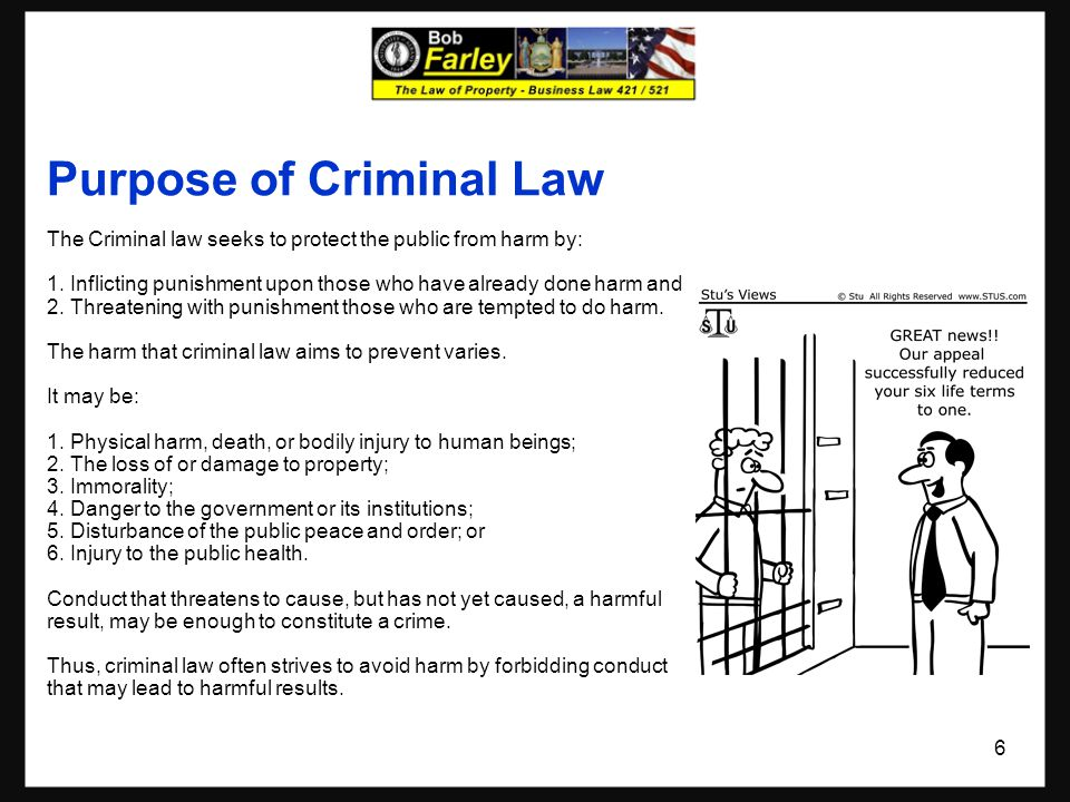 Purpose of Criminal Law The Criminal law seeks to protect the public from harm by: 1.