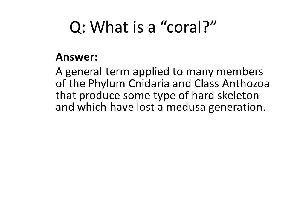 Q: What is a coral? Answer: A general term applied to many members of the Phylum Cnidaria and Class Anthozoa that produce some type of hard skeleton and which have lost a medusa generation.