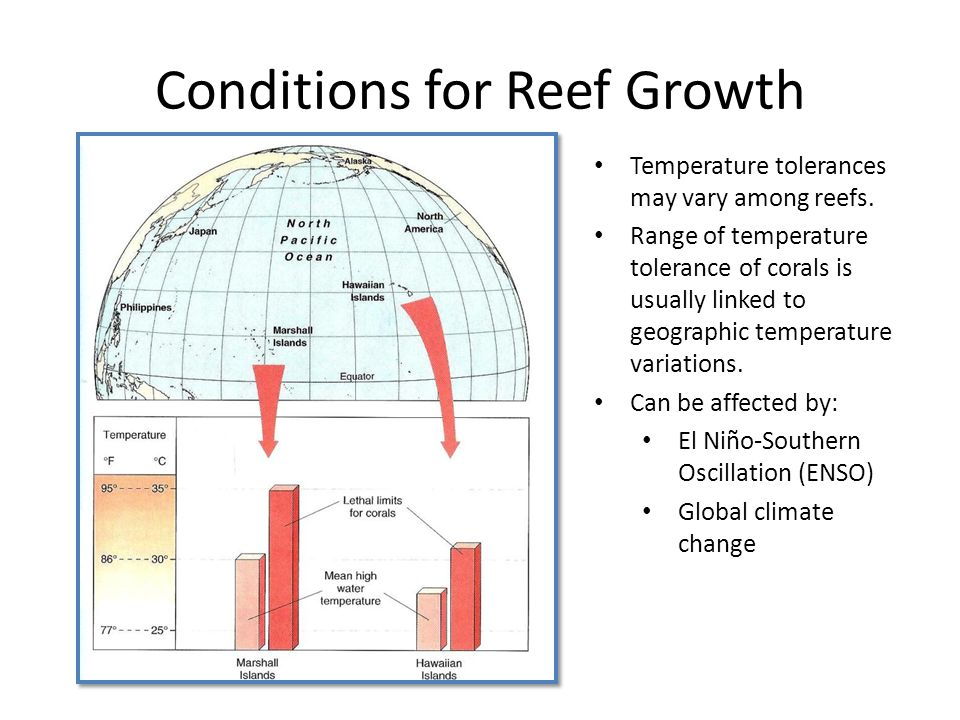 Conditions for Reef Growth Temperature tolerances may vary among reefs.