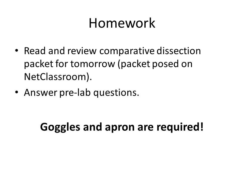Homework Read and review comparative dissection packet for tomorrow (packet posed on NetClassroom).