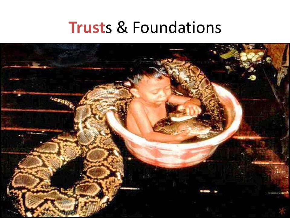 Trusts & Foundations