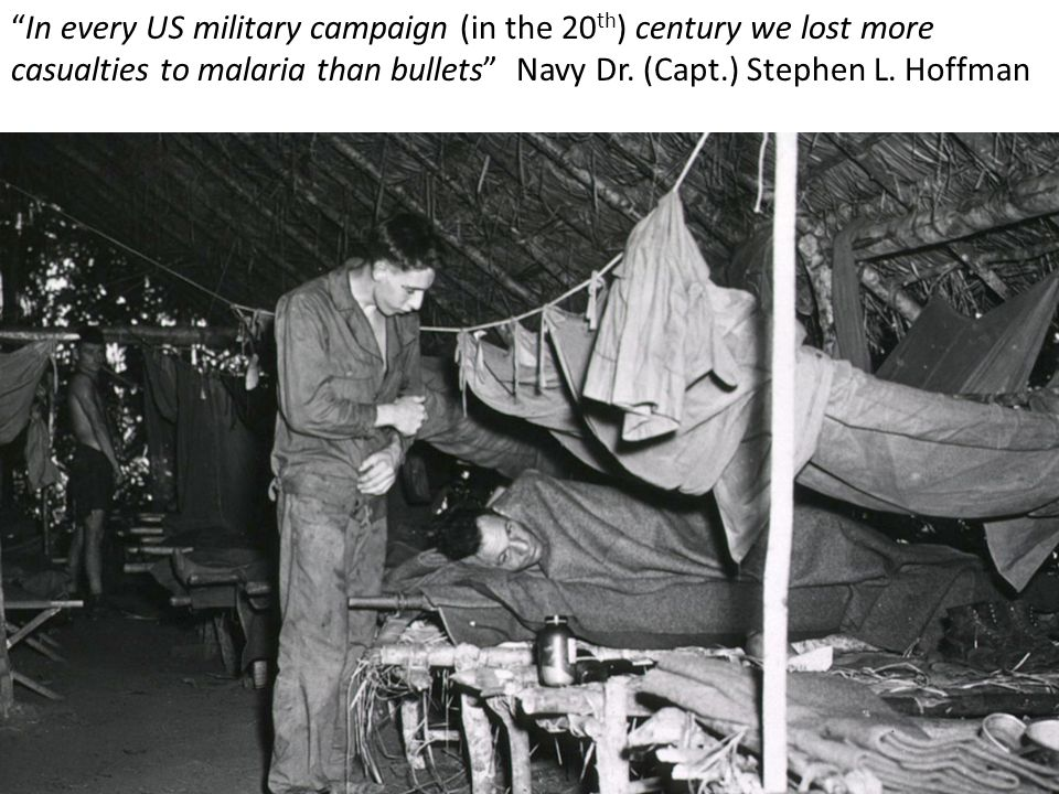 In every US military campaign (in the 20 th ) century we lost more casualties to malaria than bullets Navy Dr.