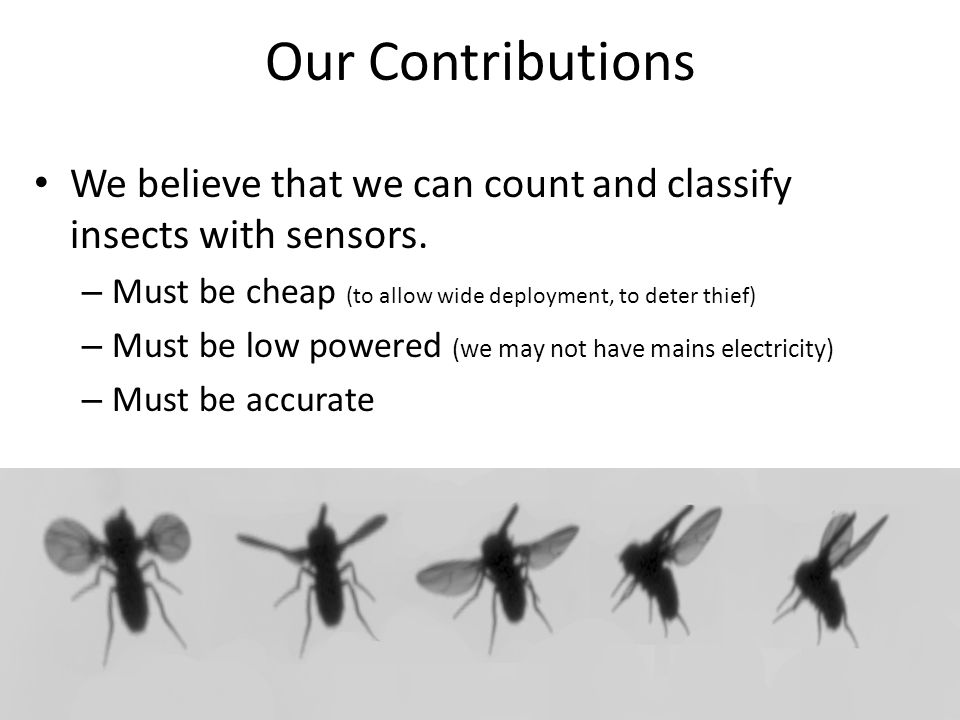 Our Contributions We believe that we can count and classify insects with sensors.