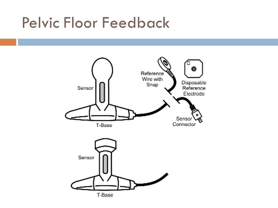 Pelvic Floor Feedback