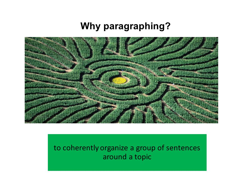 What a Paragraph Does in an Argument – presents a supporting point – connects the new point with the essay's main argument – elaborates the point consistently – prepares the reader to move on to the next point