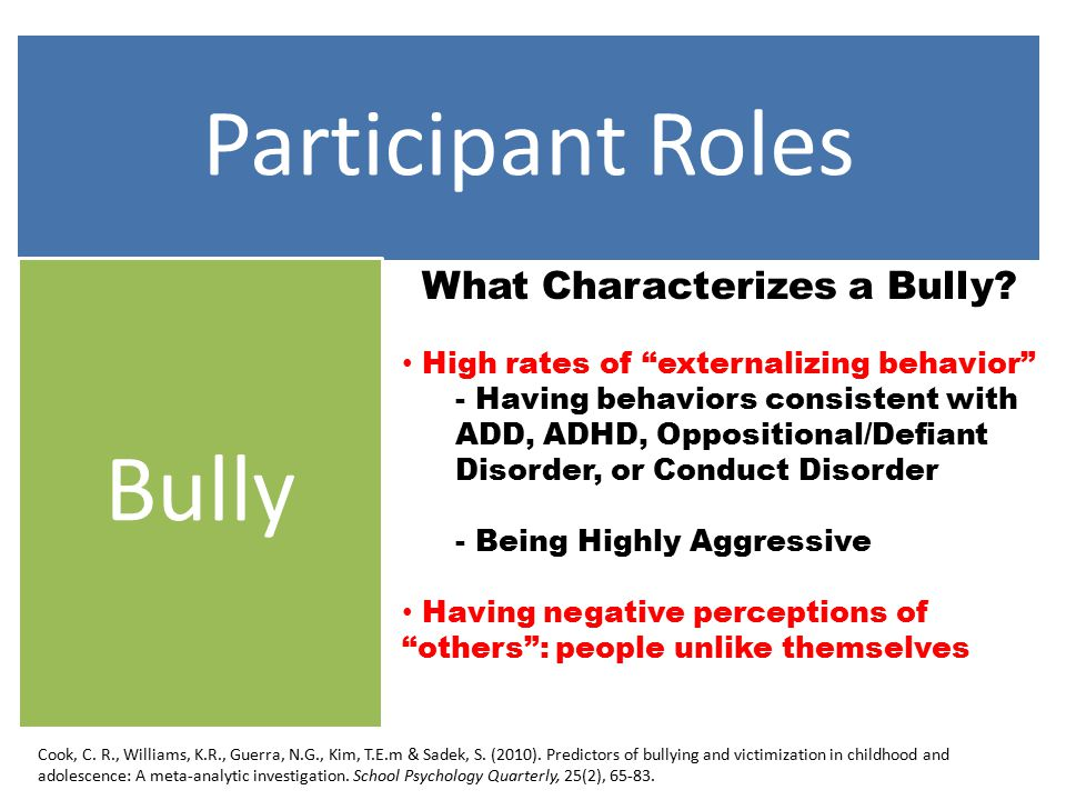 Participant Roles Bully What Characterizes a Bully.