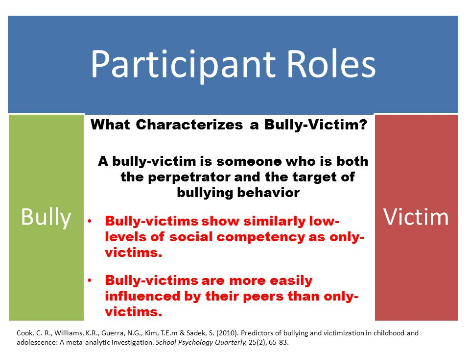 Participant Roles BullyVictim What Characterizes a Bully-Victim.