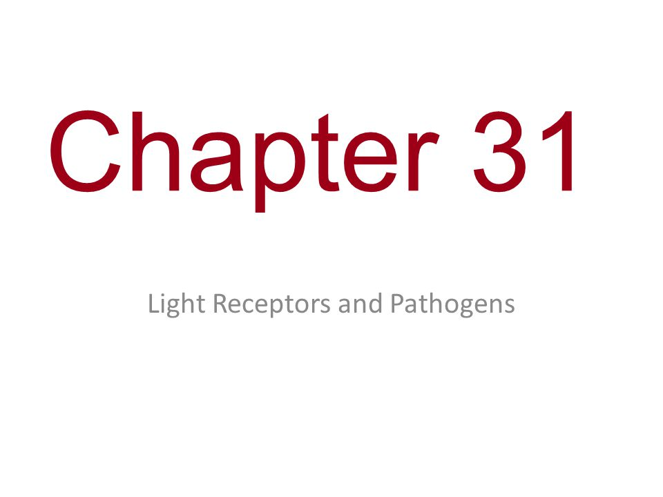 Chapter 31 Light Receptors and Pathogens