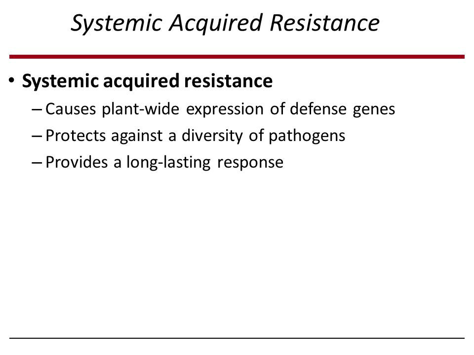 Systemic Acquired Resistance Systemic acquired resistance – Causes plant-wide expression of defense genes – Protects against a diversity of pathogens