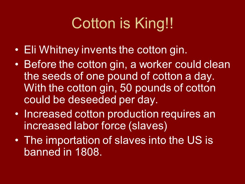 Cotton is King!! Eli Whitney invents the cotton gin. Before the cotton gin, a worker could clean the seeds of one pound of cotton a day. With the cott