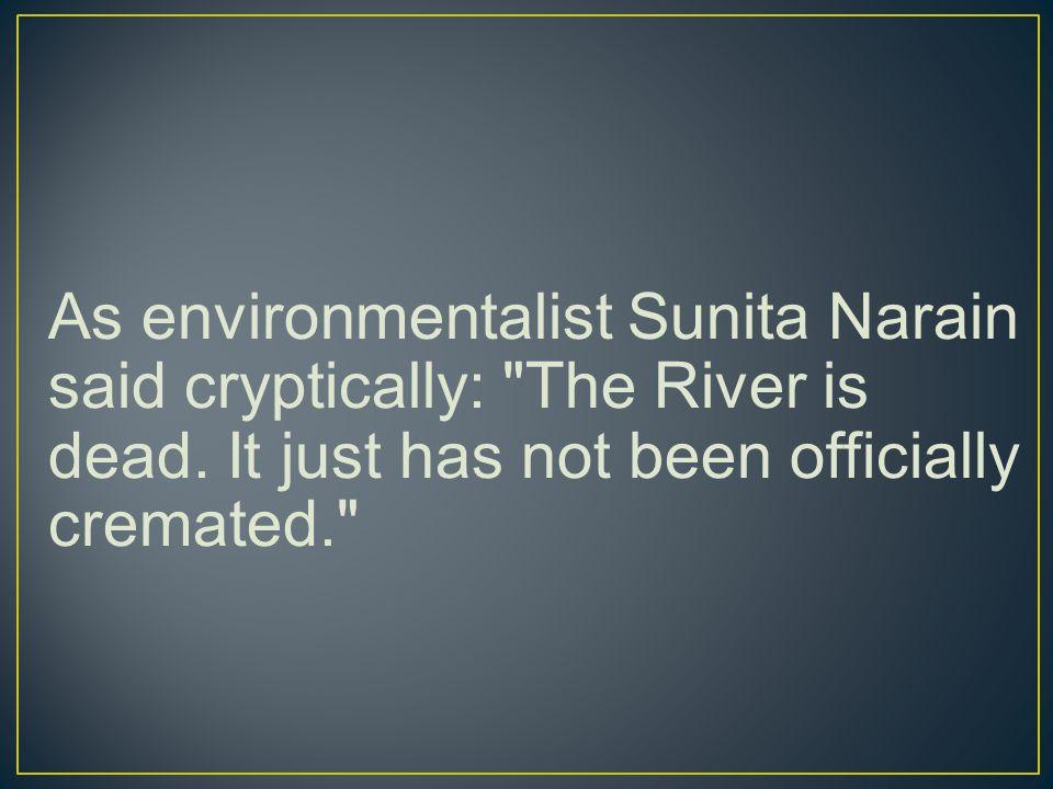 As environmentalist Sunita Narain said cryptically: The River is dead.