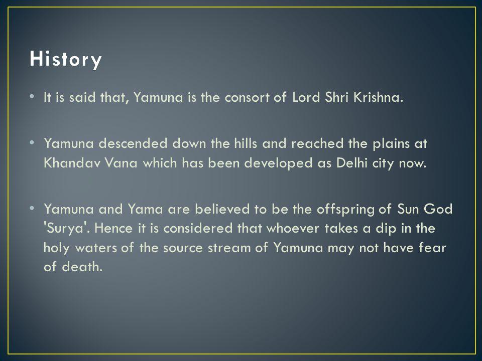 It is said that, Yamuna is the consort of Lord Shri Krishna.