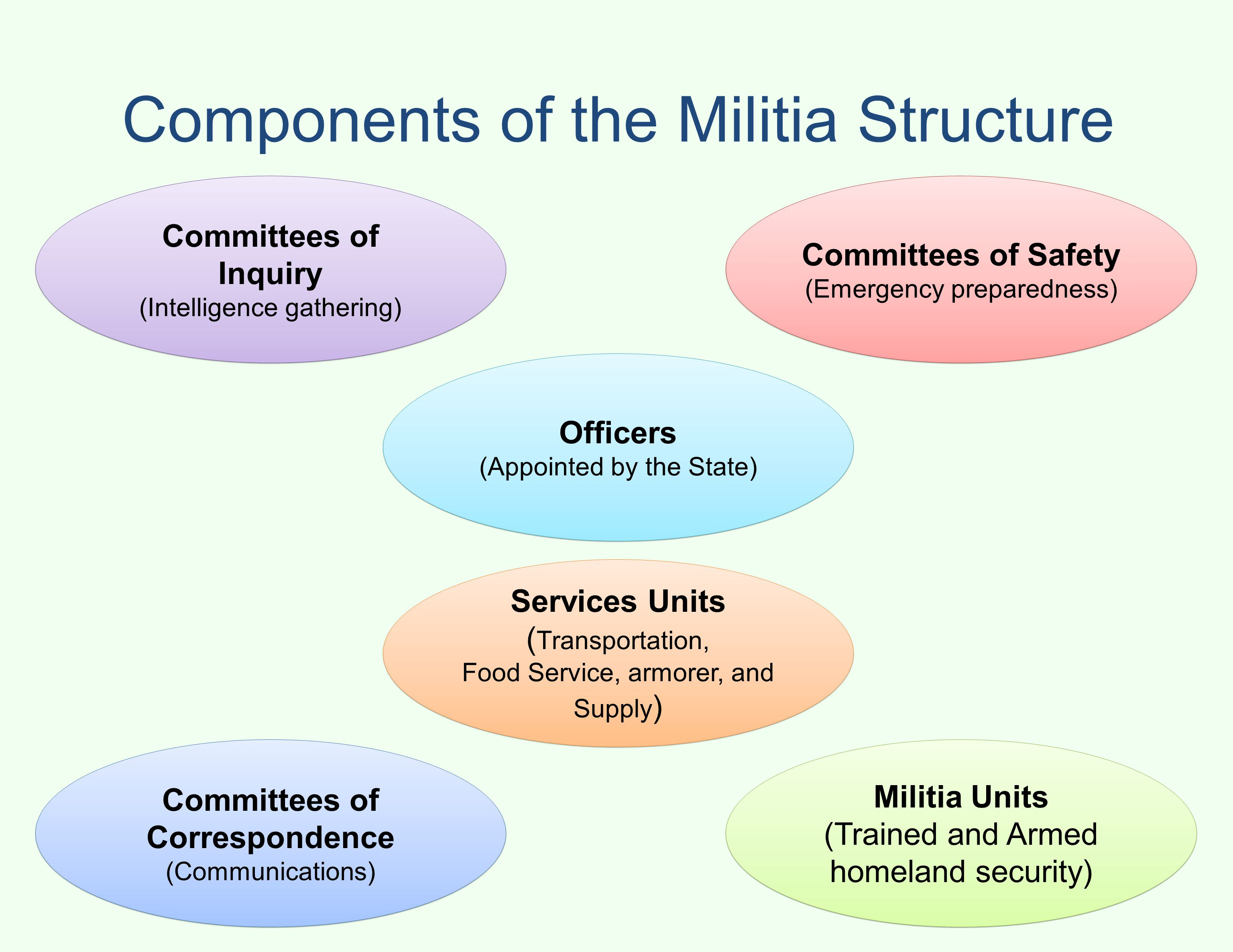 Components of the Militia Structure Committees of Inquiry (Intelligence gathering) Committees of Correspondence (Communications) Committees of Safety (Emergency preparedness) Militia Units (Trained and Armed homeland security) Services Units ( Transportation, Food Service, armorer, and Supply ) Officers (Appointed by the State)