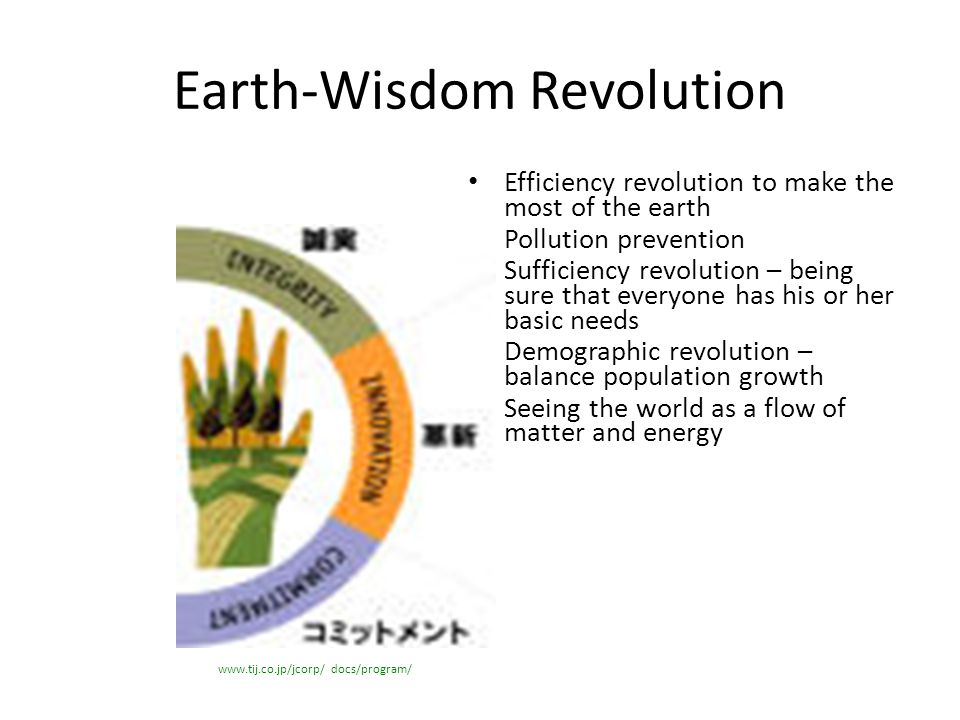 Earth-Wisdom Revolution Efficiency revolution to make the most of the earth Pollution prevention Sufficiency revolution – being sure that everyone has