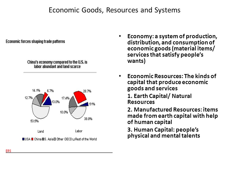 Economic Goods, Resources and Systems Economy: a system of production, distribution, and consumption of economic goods (material items/ services that