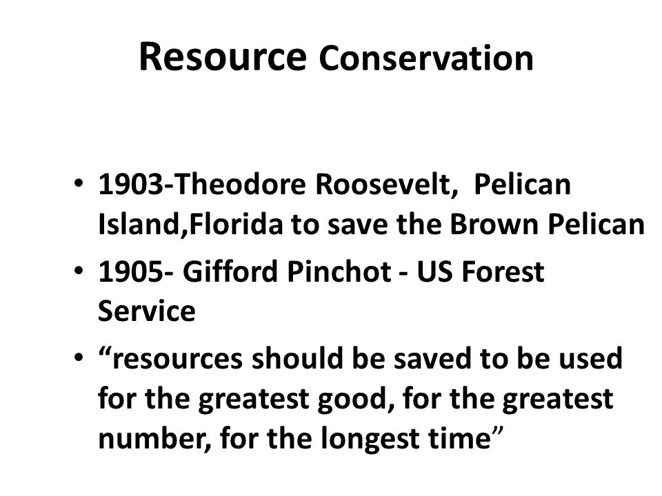 """Resource Conservation 1903-Theodore Roosevelt, Pelican Island,Florida to save the Brown Pelican 1905- Gifford Pinchot - US Forest Service """"resources s"""