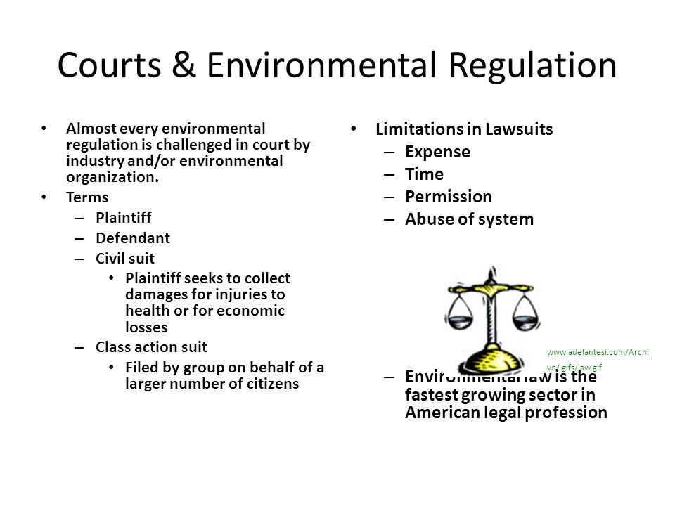 Courts & Environmental Regulation Almost every environmental regulation is challenged in court by industry and/or environmental organization. Terms –