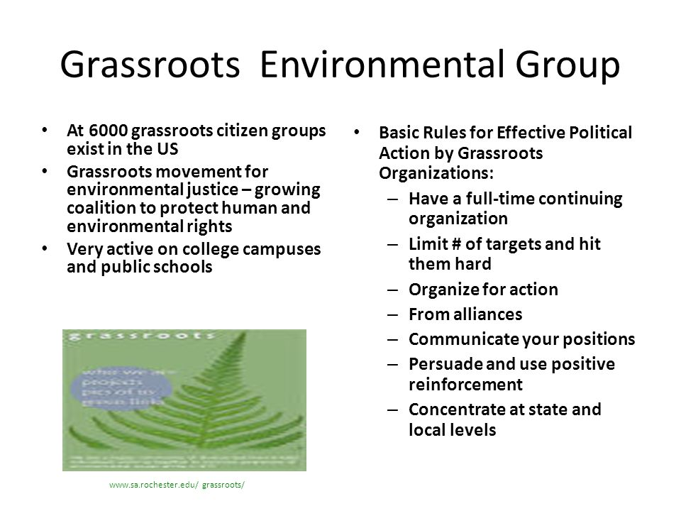Grassroots Environmental Group At 6000 grassroots citizen groups exist in the US Grassroots movement for environmental justice – growing coalition to