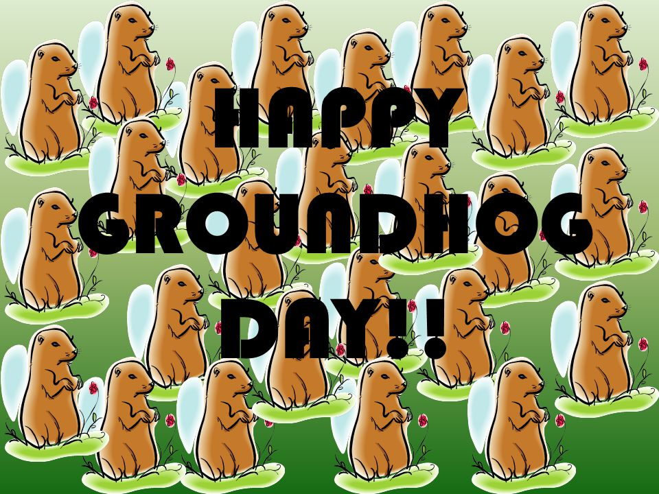 HAPPY GROUNDHOG DAY!!
