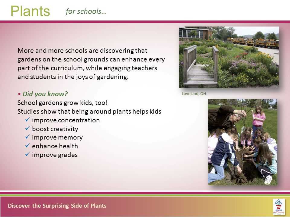 Discover the Surprising Side of Plants Plants for schools… More and more schools are discovering that gardens on the school grounds can enhance every part of the curriculum, while engaging teachers and students in the joys of gardening.