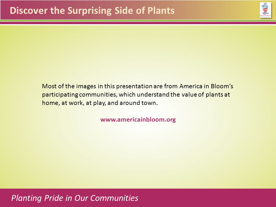 Discover the Surprising Side of Plants Most of the images in this presentation are from America in Bloom's participating communities, which understand the value of plants at home, at work, at play, and around town.