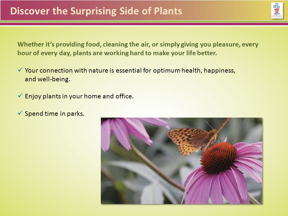 Discover the Surprising Side of Plants Whether it's providing food, cleaning the air, or simply giving you pleasure, every hour of every day, plants are working hard to make your life better.