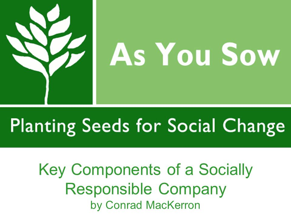 Key Components of a Socially Responsible Company by Conrad MacKerron