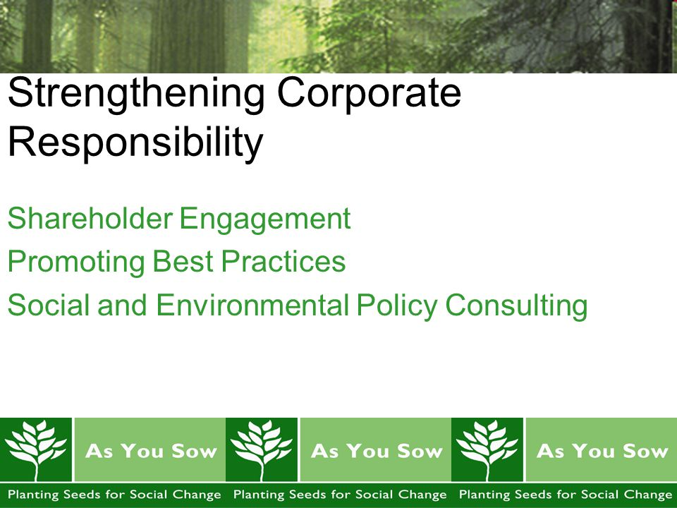 Strengthening Corporate Responsibility Shareholder Engagement Promoting Best Practices Social and Environmental Policy Consulting